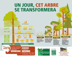 un-jour-cet-arbre-se-transformera_logo_CDR