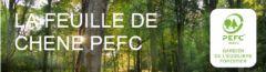 bandeau_feuille_de_chene_PEC_Aura