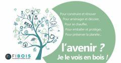 Journée Internationale des Forêts_2019_Fibois_aura