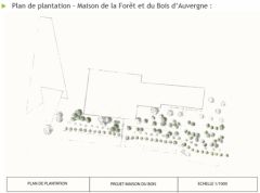 Plan_plantation_MFB