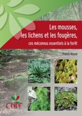 mousses_lichens_fougeres